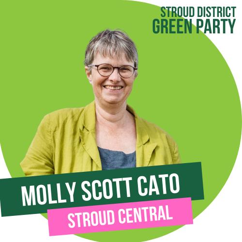 molly scott cato - stroud central
