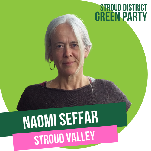 Naomi Seffar - Stroud Town candidate for Valley